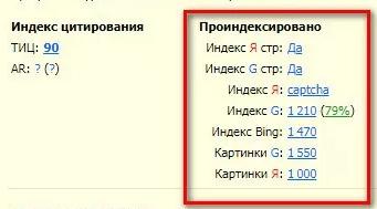 RDS bar для просмотра индексации
